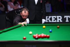 Snooker player, Mark Williams Royalty Free Stock Images