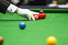 Snooker referee Stock Photography