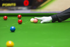 Snooker referee Royalty Free Stock Images