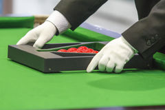 Snooker referee set up ball for new game Stock Photography