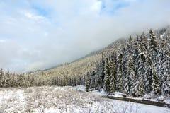 Snoqualmie-Berge mit Nebel stockfotografie