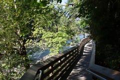 Snoqualmie Falls River in Seattle, WA stock photo