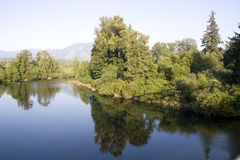 Snoqualmie river afternoon Stock Photography