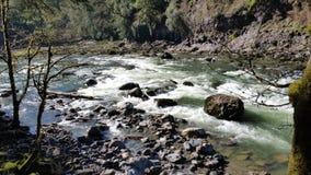 Snoqualmie rzeka, Mali gwałtowni wzdłuż rzecznego łóżka z wielkimi skałami obraz royalty free