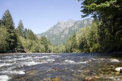 Snoqualmie rzeki dolina Zdjęcie Royalty Free
