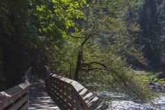 Snoqualmie tombe rivière à Seattle, WA photos stock