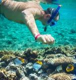 snorkel Royaltyfria Foton