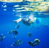 Snorkel Royalty Free Stock Photos