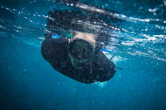 Snorkel diver Stock Images