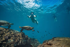 A girl doing snorkeling in tropical water royalty free stock photography