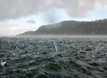 Snorkel in het midden van het overzees tijdens een tropische regen stock foto's