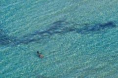 Snorkel in het overzees Stock Afbeeldingen