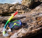 Snorkel and mask. A multicoloured snorkel and mask on a log stock photo