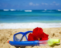 Snorkel and mask on sandy beach. Snorkel and mask with tropical flower on sandy beach in Hawaii, Kauai Stock Photography