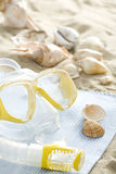 Snorkel mask and shells Stock Images