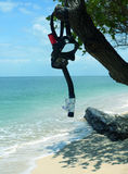 Snorkel & Mask on Tree. Coral Beach SE Asia stock image