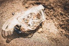 Snorkel muskus op de kiezelstenen bij de overzeese kust stock afbeeldingen