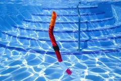 Snorkel słabnięcie w basenie - przegląda podwodnego fotografia stock