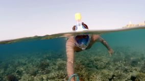 Snorkel swim split view, Red Sea, Egypt. Snorkel swim in underwater exotic tropics paradise with fish and coral reef, beautiful view of tropical sea. Marsa alam stock video footage