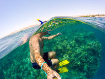 Snorkel swims in shallow water, Red Sea, Egypt Stock Photos