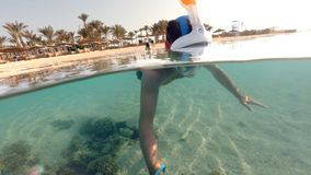 Snorkel swims in shallow water, Red Sea, Egypt. Underwater and surface split view in the tropics paradise with snorkeling man, fish and coral reef, under and stock video footage