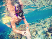 Snorkel swims in shallow water, Red Sea, Egypt Stock Photo