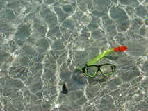 snorkel underwater Obraz Stock