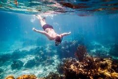 Snorkeler Fotografía de archivo libre de regalías