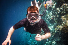 Snorkeler Royalty Free Stock Images