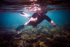 Snorkeler Royalty Free Stock Image