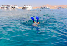 Snorkeler diving below the sea Stock Photography