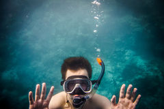 Snorkeler Stock Photos