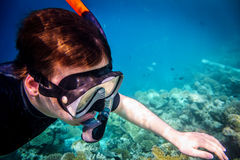 Snorkeler Royalty Free Stock Photo