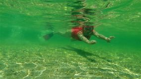 Snorkeler femenino en bahía del tiburón metrajes