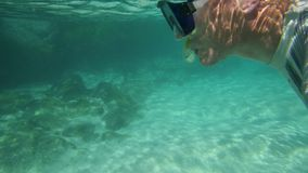 A snorkeler free swims the turquoise sea. A tracking shot of a man wearing a yellow snorkeling mask and diving garments swimming under the turquoise water stock video footage