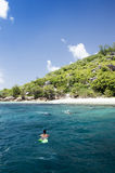 A snorkeler at an island coral reef with turtle. Seychelles. Royalty Free Stock Images