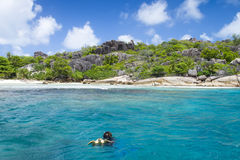 A snorkeler at an island coral reef with turtle. Seychelles. Royalty Free Stock Photo