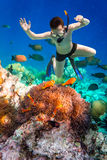 Snorkeler Maldives Indian Ocean coral reef. Royalty Free Stock Image