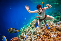 Snorkeler Maldives Indian Ocean coral reef. Royalty Free Stock Photos