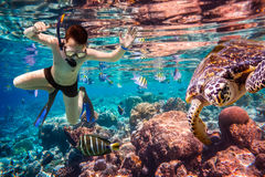 Snorkeler Maldives Indian Ocean coral reef. Stock Photo