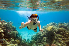 Snorkeler. Mar Rosso fotografia stock libera da diritti