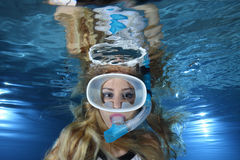 Snorkeler Royalty Free Stock Photography