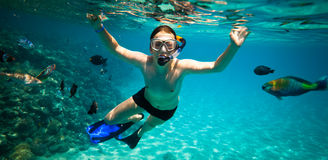 Snorkeler. Red sea Stock Photography