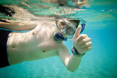 Snorkeler. Red sea Royalty Free Stock Photos