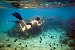 Snorkeler. Red sea Stock Photo