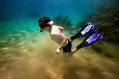 Snorkeler. Rode overzees Stock Foto