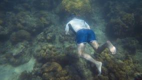 Snorkeler simmar långsamt till yttersidan av havet arkivfilmer