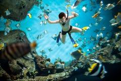 Snorkeler underwater Stock Image