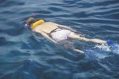 Snorkeler w wodzie, Key West, FL zdjęcie royalty free
