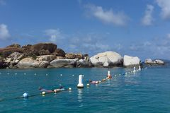 Snorkelers at The Baths, Virgin Gorda. BVI, British Virgin Islands, Caribbean on sunny day Stock Photography